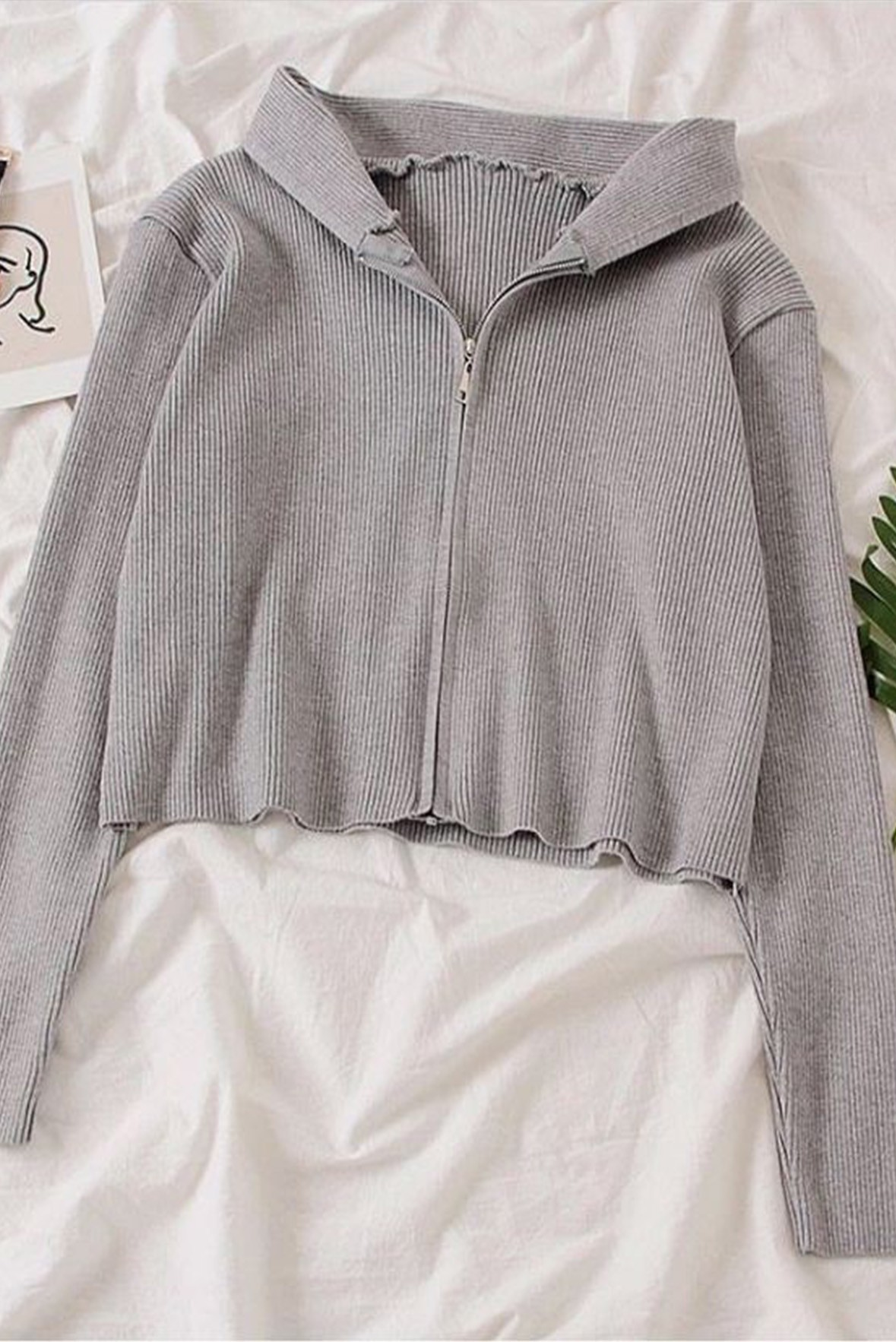 Front Zip Long Sleeves Ribbed Top