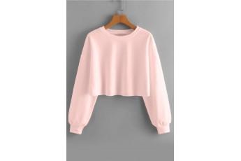 Veiled Rose Drop Shoulder Crop Sweatshirt